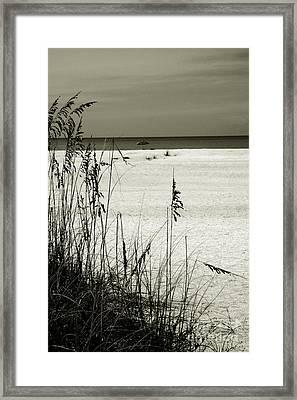 Sanibel Island Florida Framed Print by Susanne Van Hulst