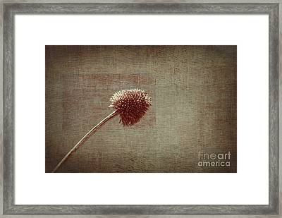 Sans Nom - S03p11t05 Framed Print by Variance Collections