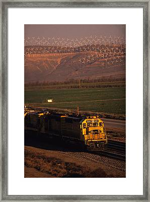 Santa Fe Windmills Framed Print by Susan  Benson