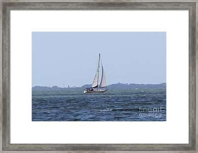 Sarasota Sailing Framed Print by Theresa Willingham