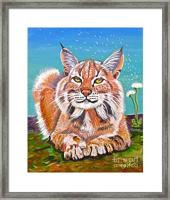 Sassy Lynx And Dandelions Framed Print by Phyllis Kaltenbach