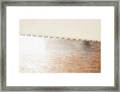 Saw Blade Framed Print by Shannon Fagan