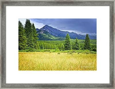 Scenic View In Canadian Rockies Framed Print by Elena Elisseeva