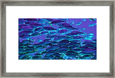 School Daze Framed Print by DigiArt Diaries by Vicky B Fuller