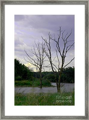 Sci-fi Lake Framed Print by Alan Look