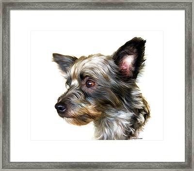 Scooter Framed Print by Steven Richardson