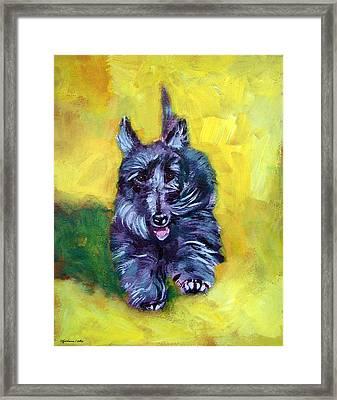 Scottie Trot  - Scottish Terrier Framed Print by Lyn Cook