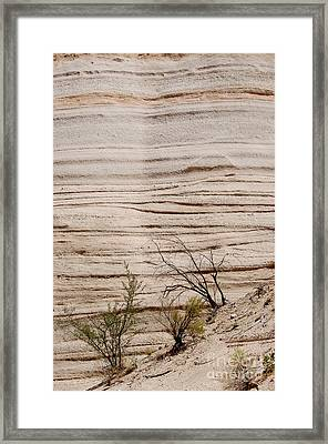 Sculpted By Nature Framed Print by Vicki Pelham