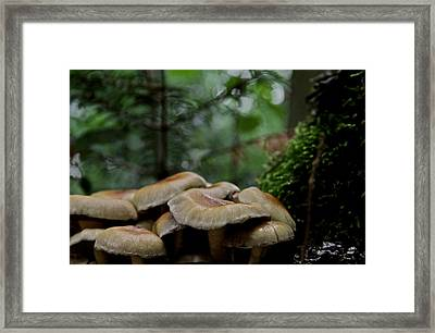 Sea Of Heads Framed Print by Odd Jeppesen
