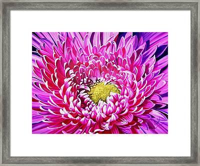 Sea Of Petals Framed Print by Karen Casciani