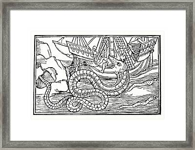 Sea Serpent, 16th Century Artwork Framed Print by Cci Archives