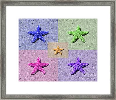 Sea Star Serigraph - 5 Stars Framed Print by Al Powell Photography USA