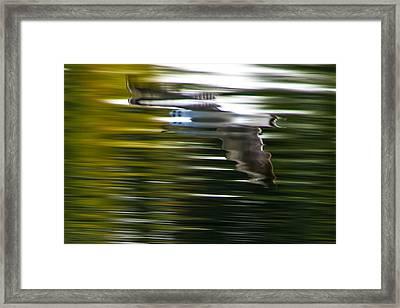 Seagull 2 Moewe 2 Framed Print by H a r a l d B e r t l i n g
