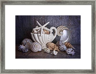 Seashells Framed Print by Tom Mc Nemar