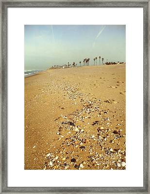 Seashells Washed Ashore Framed Print by Susan Gary