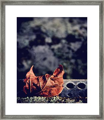 Season Of Fire Framed Print by Odd Jeppesen