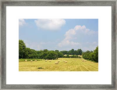 Season Of Plenty Framed Print by Jan Amiss Photography