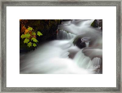Seasons Rush By Framed Print by Mike  Dawson