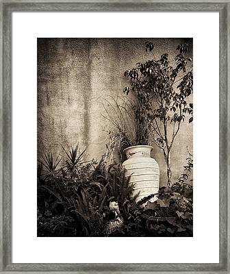 Secret Garden Framed Print by Mario Celzner