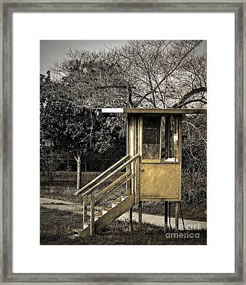 Security Check Framed Print by Gwyn Newcombe