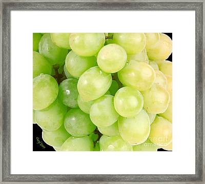 Seedless Framed Print by Cheryl Young