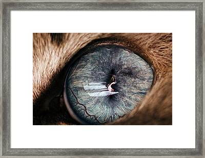 Self Portrait Through The Eyes Of Oliver Framed Print by Paul Madura