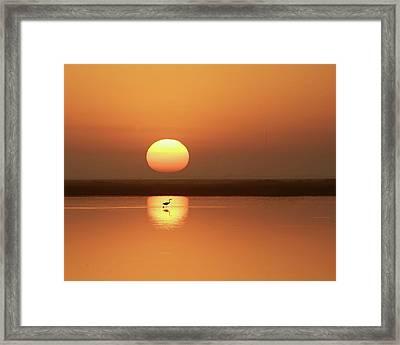 Serendipity Framed Print by Photo by Richard Lionberger