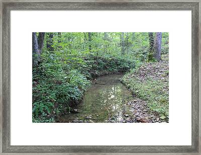 Serene Green  Framed Print by James Collier