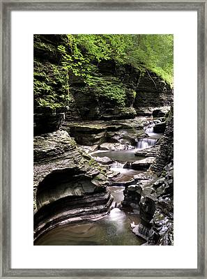 Serenity  Framed Print by Nick  Shirghio