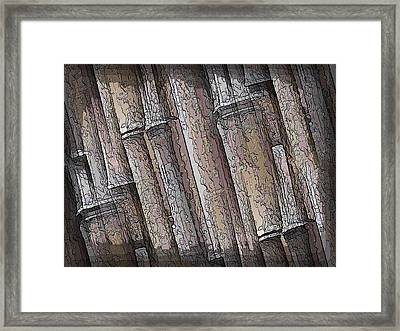 Shades Of Bamboo Framed Print by Tim Allen