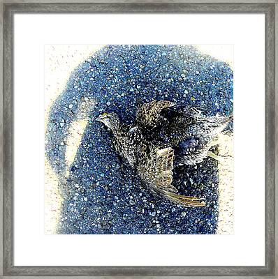 Shadowed Attempt.. Framed Print by Al  Swasey