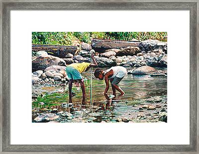 Shallow Waters Framed Print by Gregory Jules