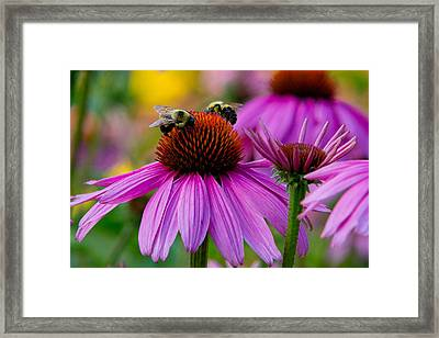 Sharing Framed Print by Frank Pietlock