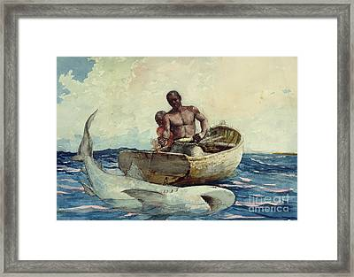 Shark Fishing Framed Print by Winslow Homer