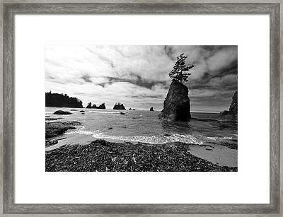 Shi Shi Beach Framed Print by Ian Stotesbury