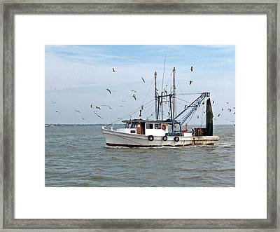 Shrimp Boat And Gulls Framed Print by Robert Brown