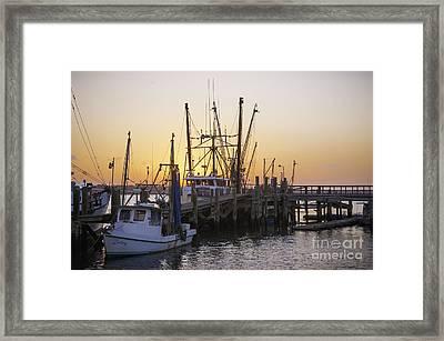 Shrimp Boats Port Royal Framed Print by David Waldrop