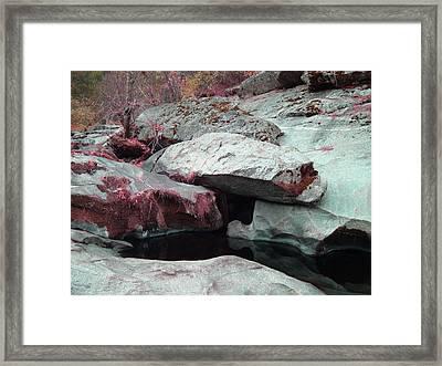 Sierra Nevada Forest Framed Print by Naxart Studio