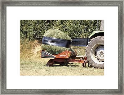 Silage Wrapping Framed Print by David Aubrey
