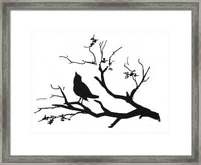 Silhouette: Bird On Branch Framed Print by Granger