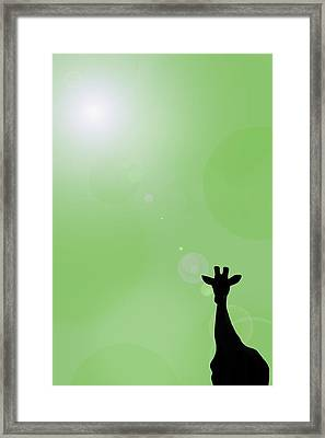Silhouette Of A Giraffe Framed Print by Chris Knorr