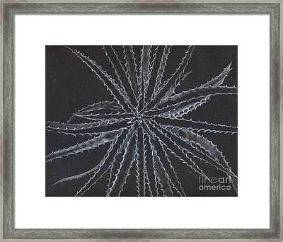 Silver Star Framed Print by Penrith Goff