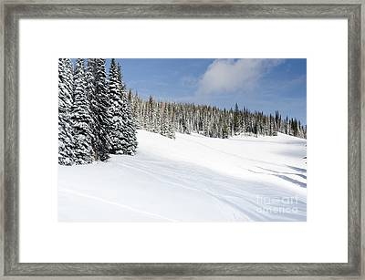 Silverstar Meadow Snow Covered Alpine Meadow Silver Star Framed Print by Andy Smy