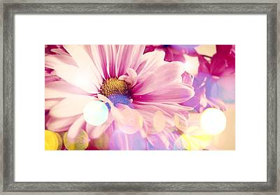 Simple Charm Framed Print by Lynsie Petig