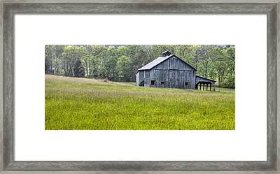 Simple Green Framed Print by JC Findley