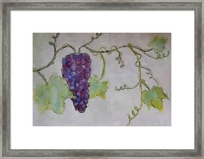 Simply Grape Framed Print by Heidi Smith