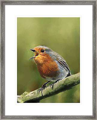 Sing Red Robin Sing Framed Print by Michael Greenaway
