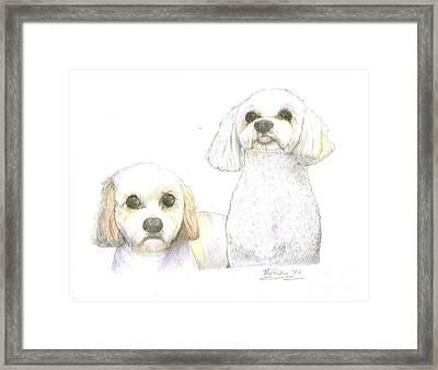 Sisters Framed Print by Bill Hubbard