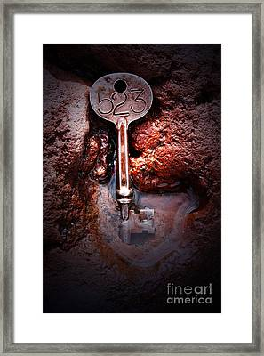 Skeleton Key No 523 Framed Print by C E Dyer