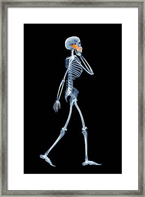 Skeleton Using A Mobile Phone Framed Print by D. Roberts
